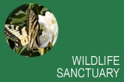 Wildlife Sanctuary